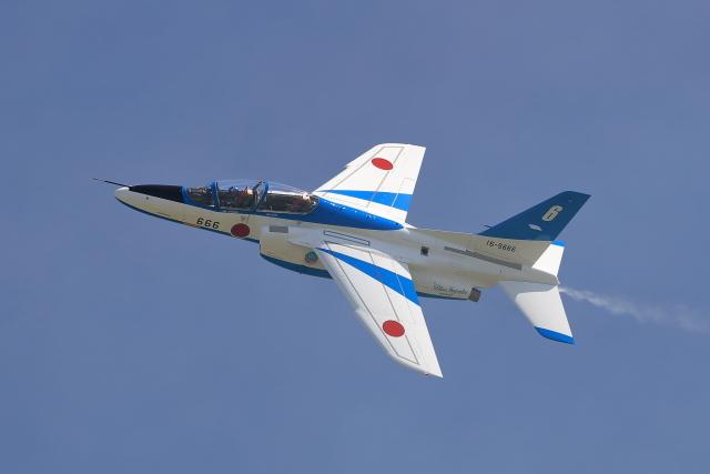 AY5I3300.JPG