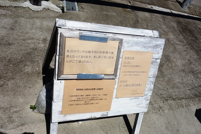 DSC09288.JPG