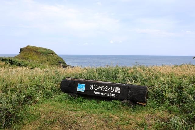 富士野園地2.JPG