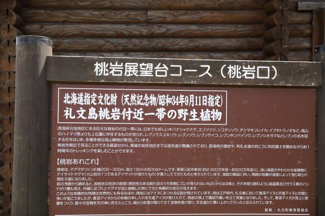 桃岩展望台コース1.JPG