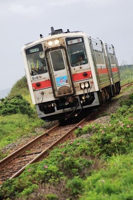 NE1A8047.JPG